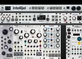 Intellijel Pallette 62HP - Beads